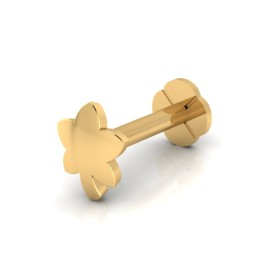 The Grace Gold Nose Screw
