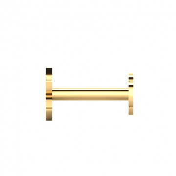 The Aadya Gold Nose Screw